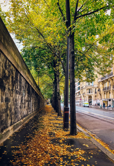 Pont de Bir-Hakeim Rainy Days Architecture Autumn Building Exterior Built Structure Day Golden Leaf Huntergo IPhone 6s+ Leaf Nature No People Outdoors Road Steetphotography Street Streetphotography The Way Forward Travel Destinations Tree