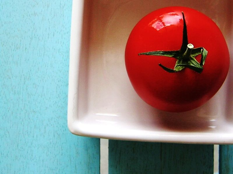 Red&white Red&blue Tomato Vegetables & Fruits Food Photography Colorphotography Tomato Series Investing In Quality Of Life