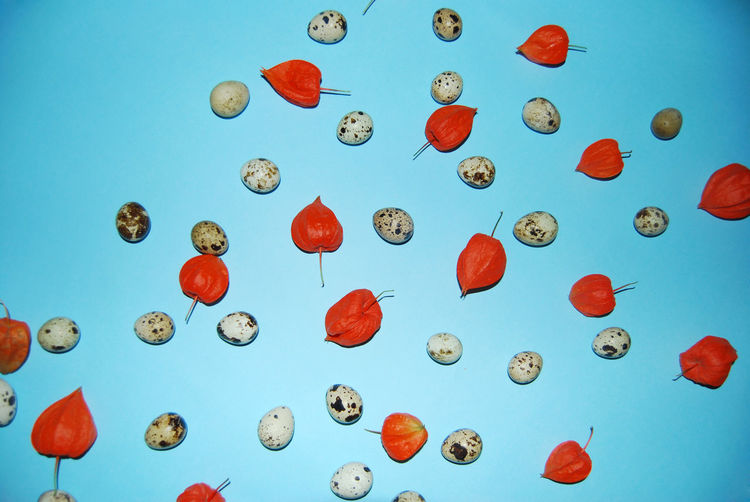 Winter cherries and eggs over blue background