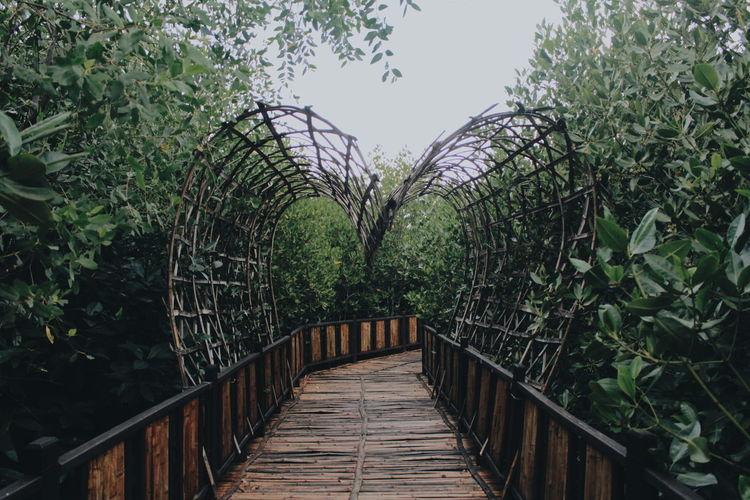 Wooden bridge of love