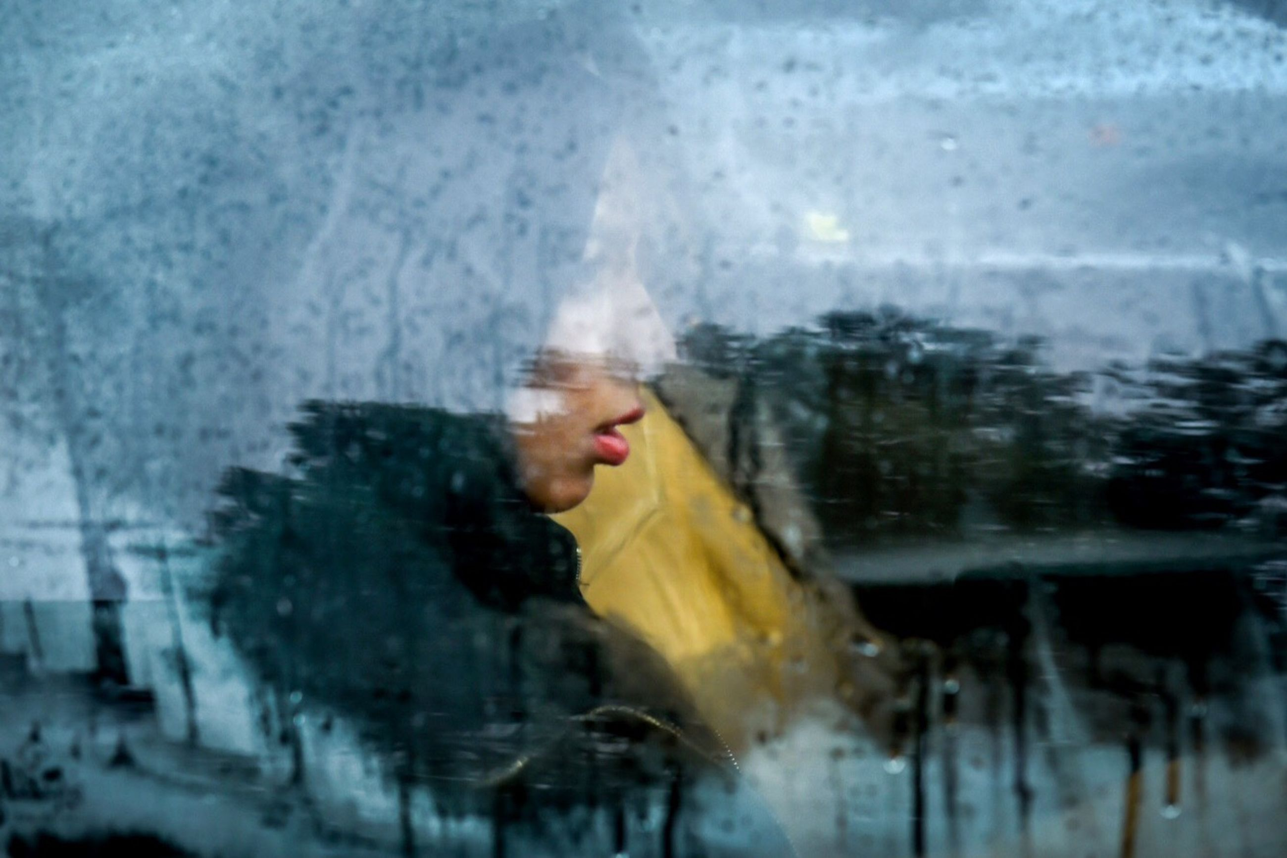 reflection, one person, real people, water, animal themes, one animal, outdoors, day, cold temperature, close-up, young adult