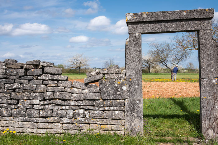 Garden Domestic Garden Door Stone Wall Stone Gardener Gardening Real People The Past Old Architecture Grass History Nature Sky Field Plant Day Built Structure Land Cloud - Sky Old Ruin Landscape Wall Tree Travel Destinations Sunlight Outdoors No People Stone Material Deterioration Ruined