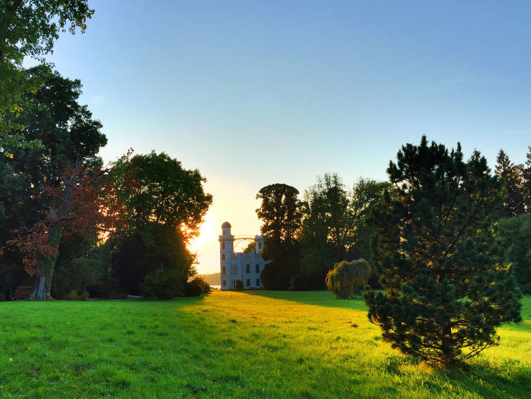 view at Pfaueninsel and the castle Blue Sky Building Exterior Castle Grass Island Isle Islet Lawn Meadow Nature Outdoors Pfaueninsel Relaxing Moments Sky Sun Sundown Sunlight Sunny Day Sunset Sunshine Tower Tree Trees