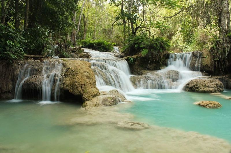 Waterfall Waterfall Water Flowing Water Scenics Beauty In Nature Nature Forest Tree Tranquil Scene Motion Idyllic Long Exposure No People Tranquility River Day Outdoors Travel Destinations Landscape