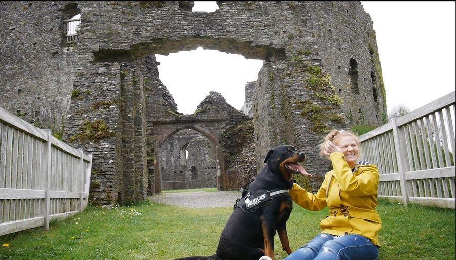 Walk Cornishcountryside Rottweileroftheday Girlandherdog Rottweilergirls Rottweilerlife Rottweilerlove Dogs Of EyeEm Dogoftheday RottweilersofeyeEm Dogs Bestfriend Beautiful Girl Cornwall Cornwall Uk Countryside Rottweiler Castle Restormel Castle