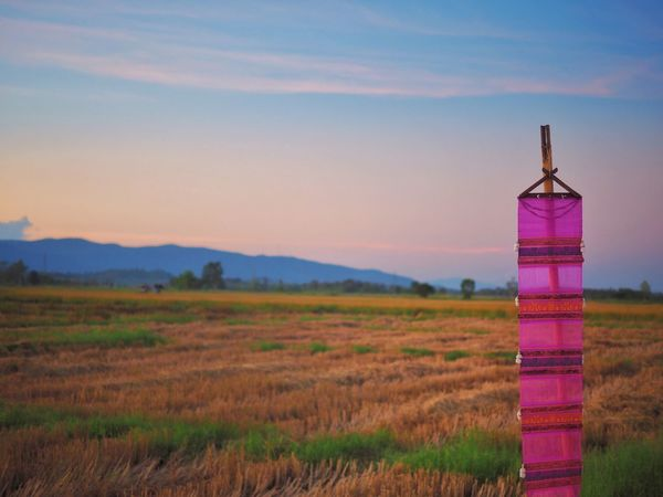 Land Sky Landscape Field Grass Scenics - Nature Nature Built Structure Tranquil Scene Sunset Tranquility No People Non-urban Scene Agriculture Tower Environment Beauty In Nature Plant Dusk Purple