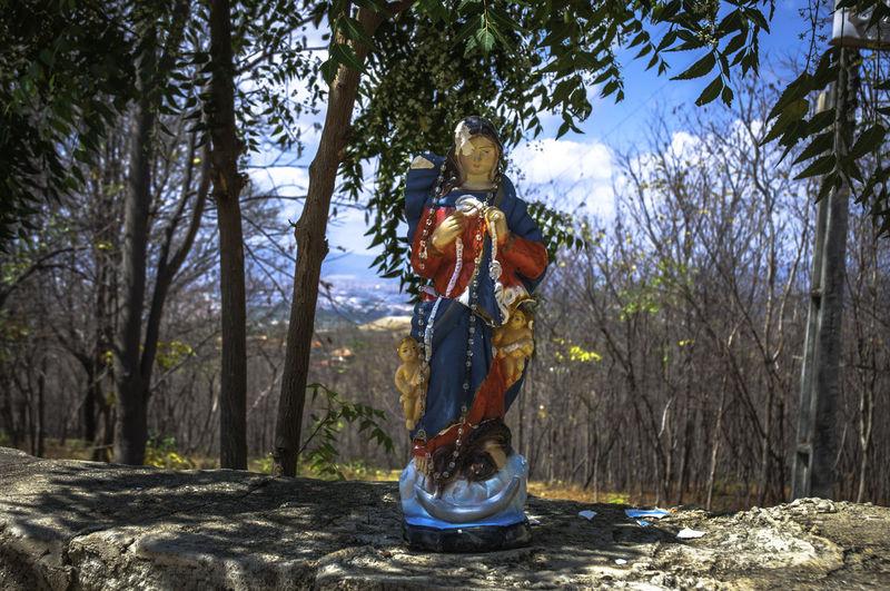 Forest Old Saint Religon Devotion Sculpture Statue Tha Saint Of The City The Refugee Saint Tree