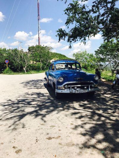Cuba Cuban Cars Cuba Collection Car Chevrolet Old 1963 Blue Sky Trees Outdoor Photography Photography EyeEmBestPics EyeEm Best Shots EyeEm Eyeemphotography EyeEm Gallery Summer Road Tripping