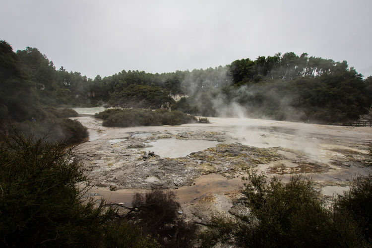 geothermal activity in new zealand Rotorua  Smoke Beauty In Nature Cloud - Sky Day Environment Geothermal Activity Heat - Temperature Hot Spring Land Landscape Nature New Zealand No People Non-urban Scene Outdoors Plant Power In Nature Scenics - Nature Sky Steam Tranquil Scene Tranquility Tree Water The Great Outdoors - 2018 EyeEm Awards
