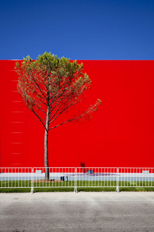 Architecture Architecturelovers Architecturephotography Biennale Biennale Di Venezia 2016 Blue Clear Sky Color Enhanced Green Labiennale Majestic Mostra Multi Colored No People Outdoors Red Streetphotography Tranquil Scene Tranquility Venezia Venice Vibrant Color