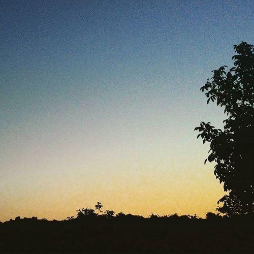 Рассвет🌇🌄 Прям патриотичненько получилось😂😂. лето июль хуюль утро . 4 :40. стоя на лестнице хохол небо рука Нога зелёная трава моря . не хватает 1