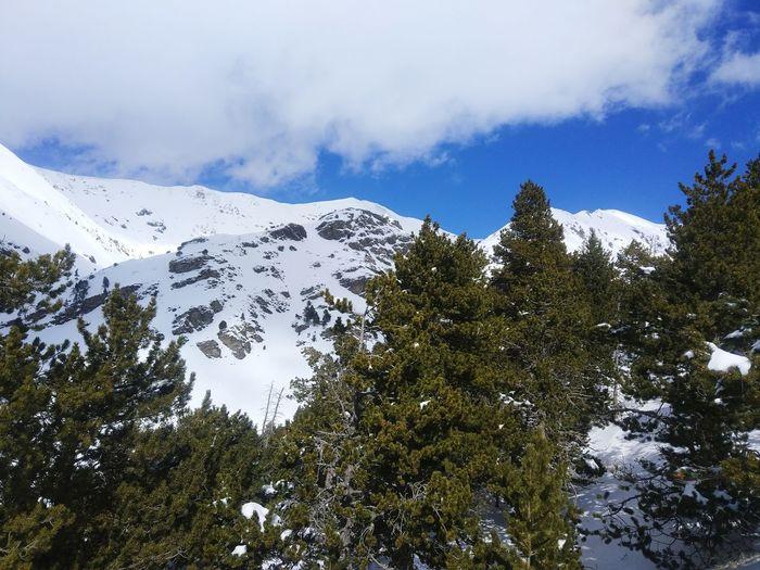 Catalunya Valldenuria Neu Snow Snow ❄
