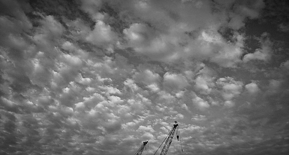 """""""Cotton Candy Floss""""🤔😄 Cloud Clouds And Sky Cloudporn Skyporn Skylovers Eye4photography  Blackandwhite Bnw Black And White White Hello World Cloud - Sky Sky Low Angle View Nature Outdoors Day No People Beauty In Nature"""