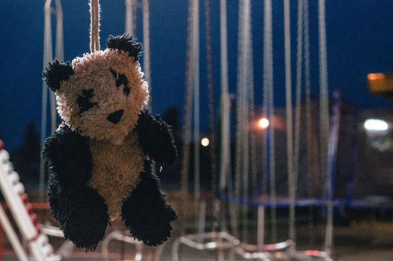 Carousel Close-up Fair Fair Ride Hanging Merrygoround Night Panda Reward Stuffed Animals Stuffed Toy Teddy Bear Toy