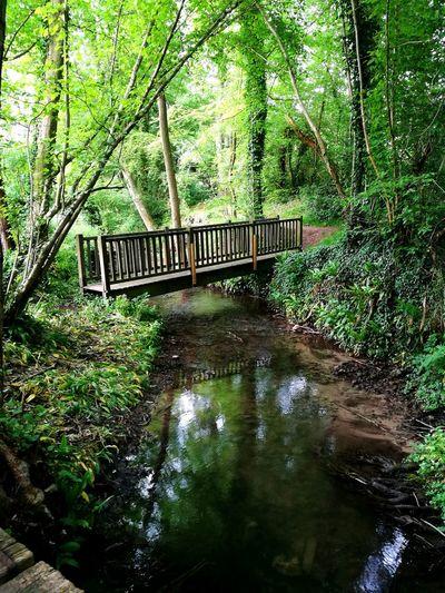 Run Nature Decouverte Honfleur, France
