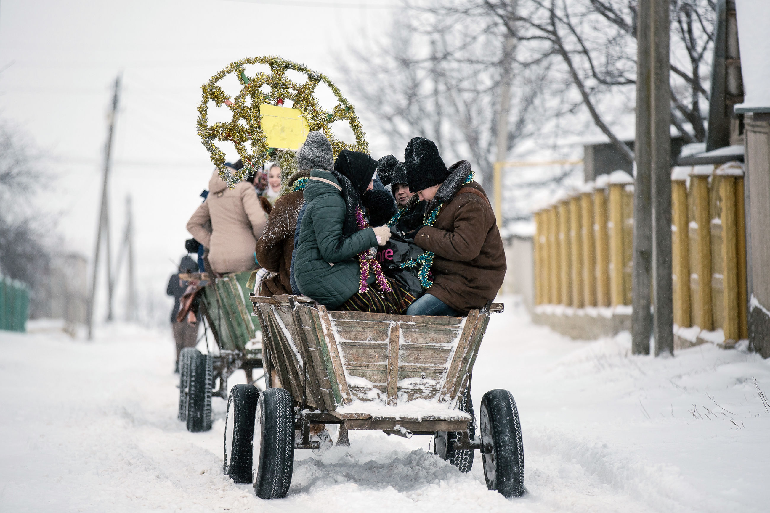 winter, cold temperature, snow, warm clothing, real people, nature, tree, transportation, mode of transportation, bare tree, domestic, day, pets, domestic animals, clothing, mammal, people, outdoors, extreme weather, riding