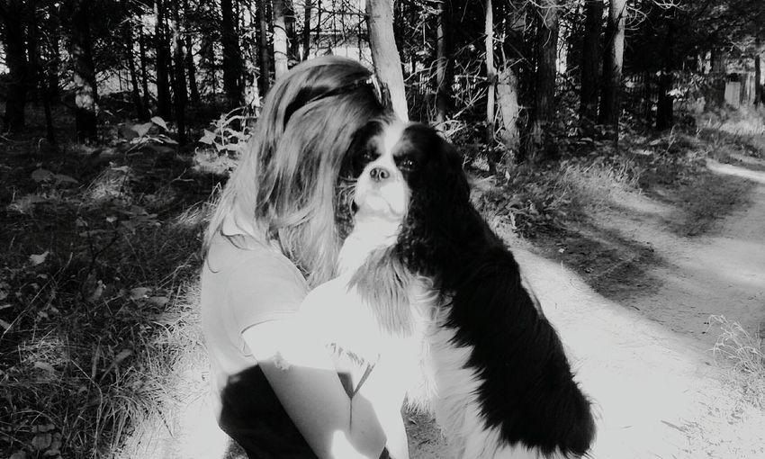 Cavalierkingcharles Love To Take Photos ❤ Dog Lovedog First Eyeem Photo