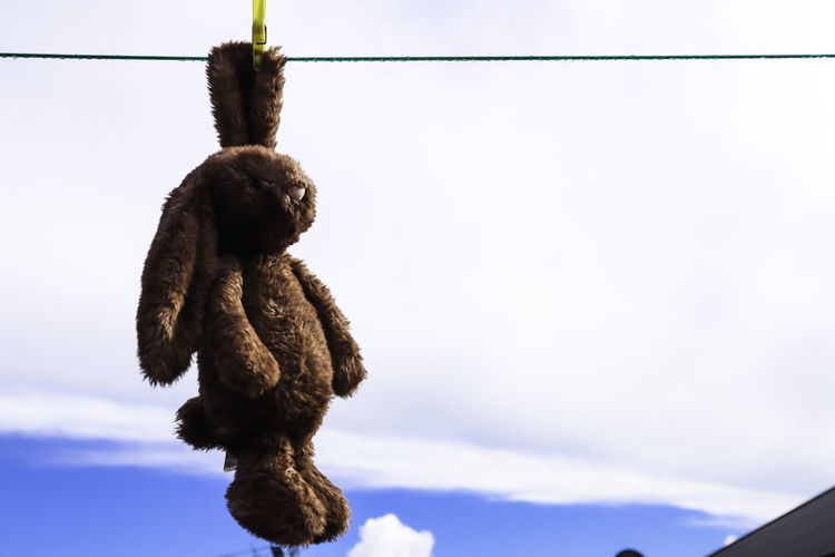 Low angle view of monkey hanging on rope against sky