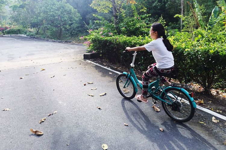 Childhood Bicycle Full Length Tree One Person Outdoors People Children Only Cycling Nature Girl Happy Family Growing Kid Daughter Bike Teach Niece