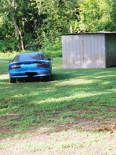 2 extremes Firebird Texas EyeEmNewHere #EyeEmNewHere Vehicle Chevy Tree Land Vehicle Car Grass Green Color Building Bumper Exterior Neighborhood