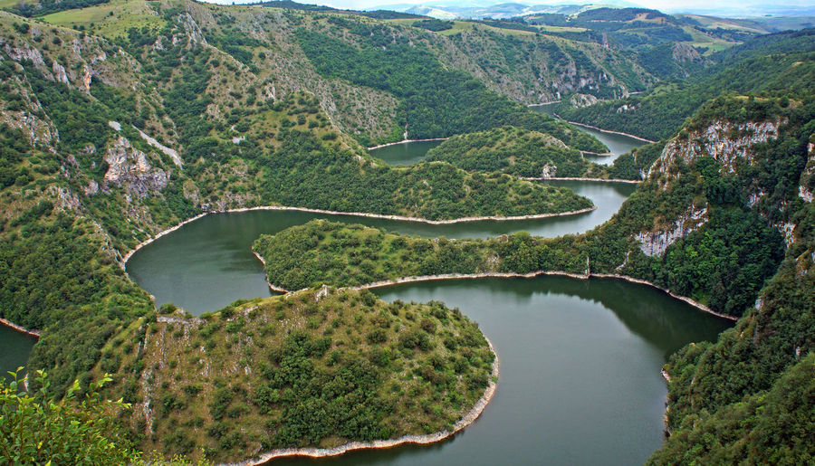 Beautiful curves on Uvac river canyon in Serbia Curves Serbia Beauty In Nature Canyon Day Forest Green Color High Angle View Lake Landscape Mountain Nature No People Outdoors River Scenics Tranquility Uvac Water