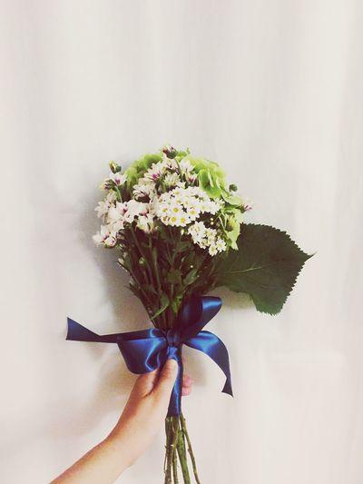 Blue Ribbon 꽃선물좋아