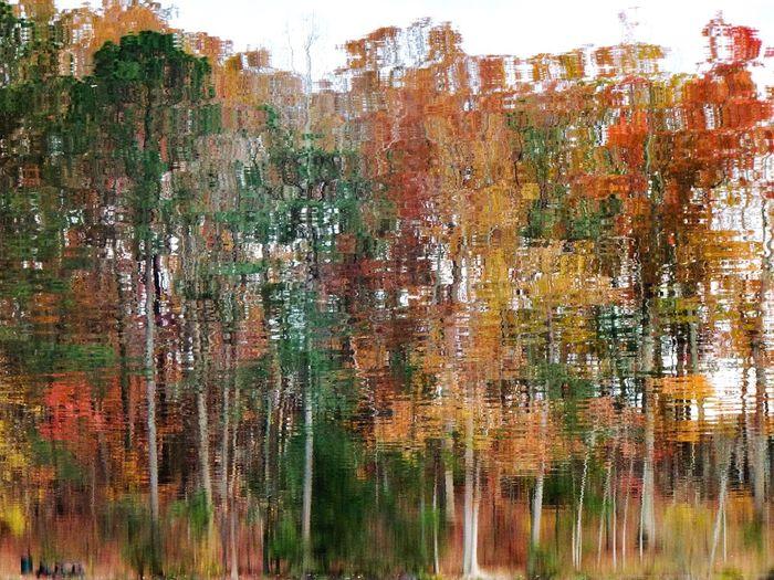 Water Reflection Nature Outdoors Lake Tree United States Georgia Stone Mountain Park Ga