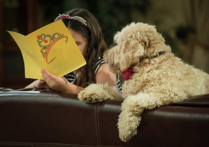 Birthday girl reading her card to curious dog Crown Happy Birthday Listning Animal Themes Best Friend Birthday Girl Companion Dog Curious Cute Day Dog Domestic Animals Friendship Girl Reading Golden Doodle Holding Human Hand Indoors  Lifestyles Love Mammal One Animal One Person People Pets Real People Sitting Young Adult Inner Power This Is Family The Photojournalist - 2018 EyeEm Awards