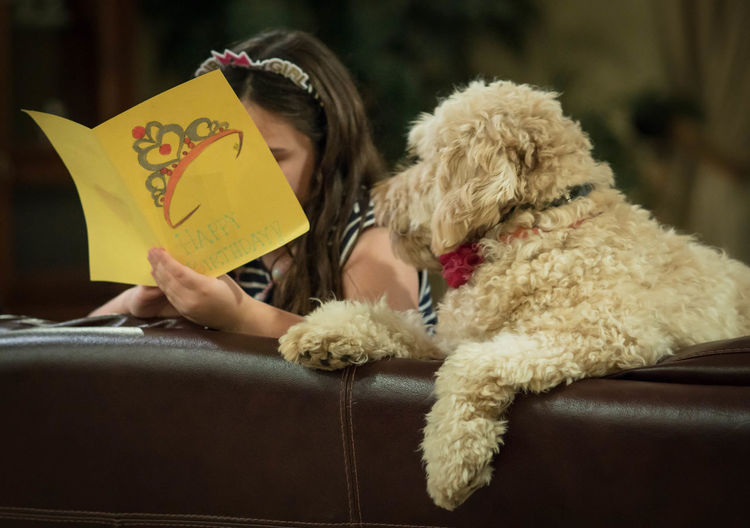 Birthday girl reading her card to curious dog Crown Happy Birthday Listning Animal Themes Best Friend Birthday Girl Companion Dog Curious Cute Day Dog Domestic Animals Friendship Girl Reading Golden Doodle Holding Human Hand Indoors  Lifestyles Love Mammal One Animal One Person People Pets Real People Sitting Young Adult Inner Power This Is Family