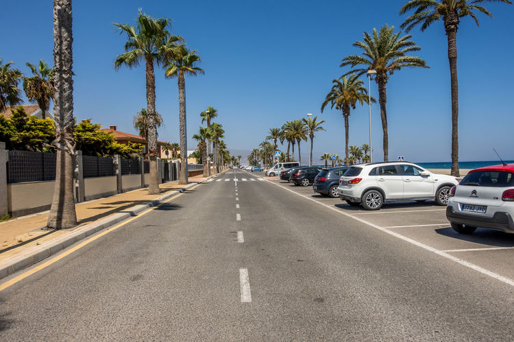 Tropical Climate Palm Tree Car Motor Vehicle Tree Transportation Plant Road Mode Of Transportation Sky Direction Land Vehicle The Way Forward City Sign Day Symbol Street Marking Diminishing Perspective No People Treelined Outdoors Almería SPAIN