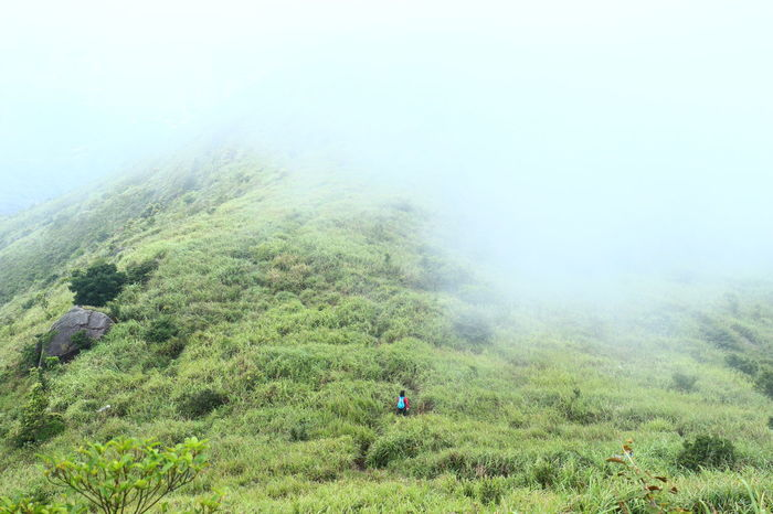 Breathing Space Nature Field Grass Landscape Cloud Misty 16-35mm F4L Canonphotography Canon Discoverhongkong HongKong Tadaa Community Hello World Investing In Quality Of Life EyeEm Ready