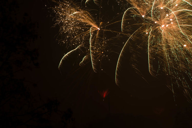 Night Illuminated Nature No People Celebration Motion Firework Glowing Long Exposure Arts Culture And Entertainment Event Firework Display Firework - Man Made Object Light Blurred Motion Low Angle View Dark Exploding Outdoors Sparks Sparkler