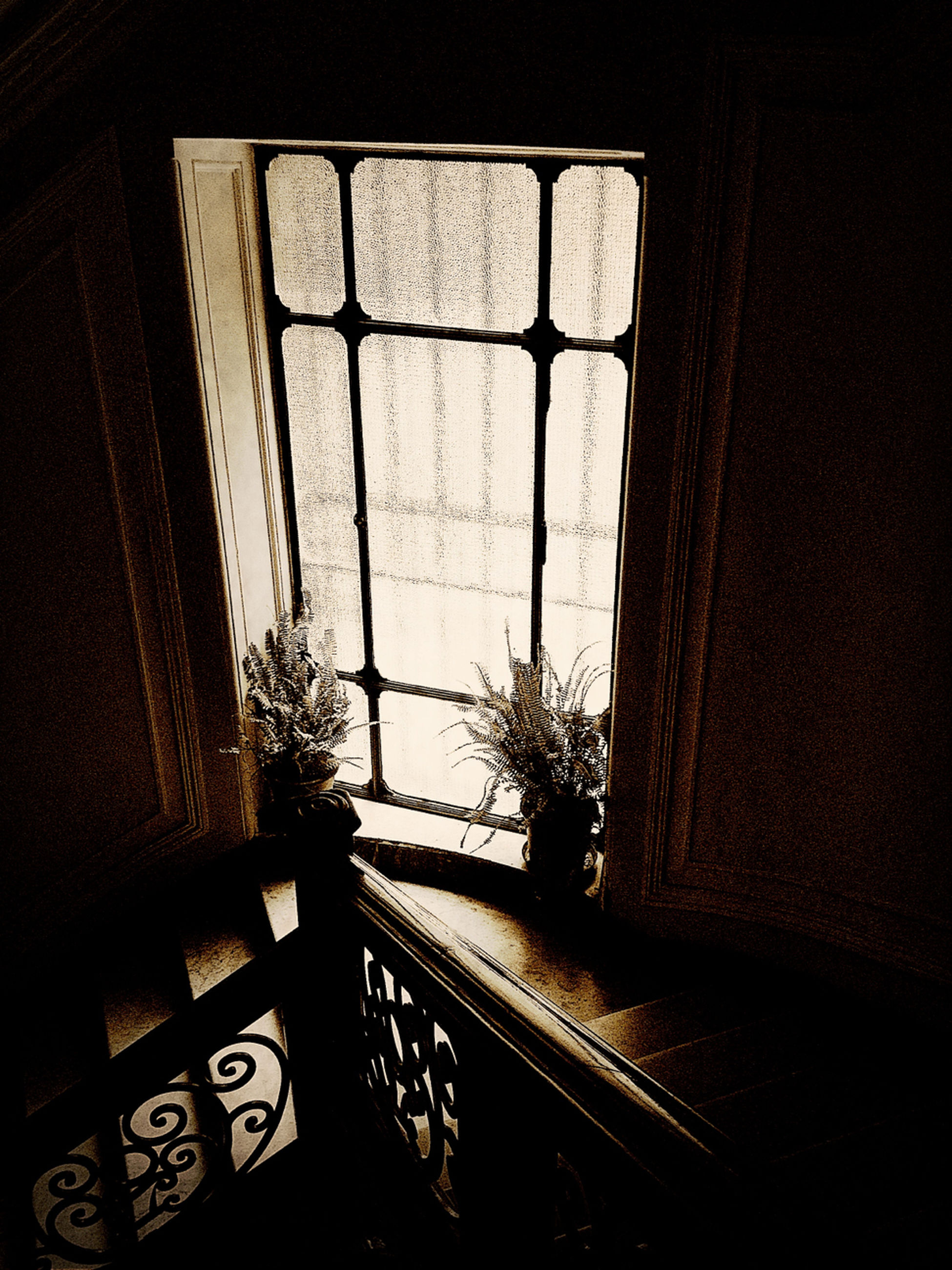 indoors, window, built structure, architecture, house, home interior, wall - building feature, sunlight, no people, shadow, absence, wall, day, closed, potted plant, door, glass - material, entrance, dark, open