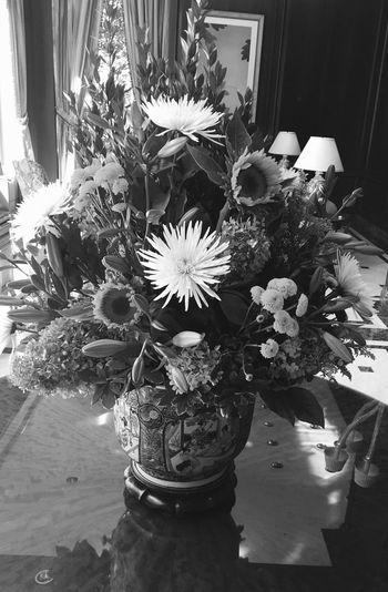 Flowers Taking Photos Hello World Blackandwhite Photography Black&white