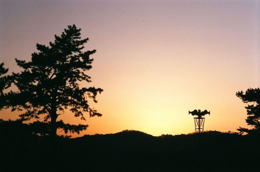 鳥羽城 鳥羽 Toba Sky And Trees Orange Sky Skyviewers Sunset Evening Sun Evening Sky Setting Sun