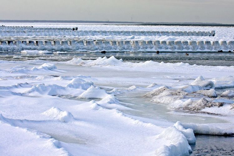 Water Sea Cold Temperature Winter Scenics - Nature Snow Horizon Over Water White Color No People Outdoors Tranquility Ice Nature Beauty In Nature Land Shore Line