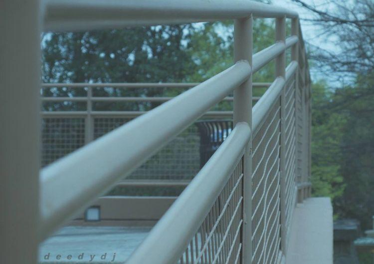 Railing Steps
