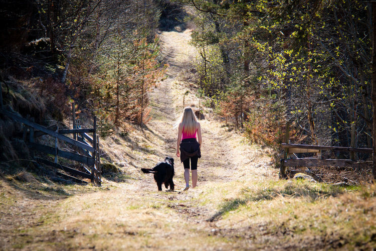 Adult Day Dog Forest Hiking One Woman Only Outdoors Pets Walking