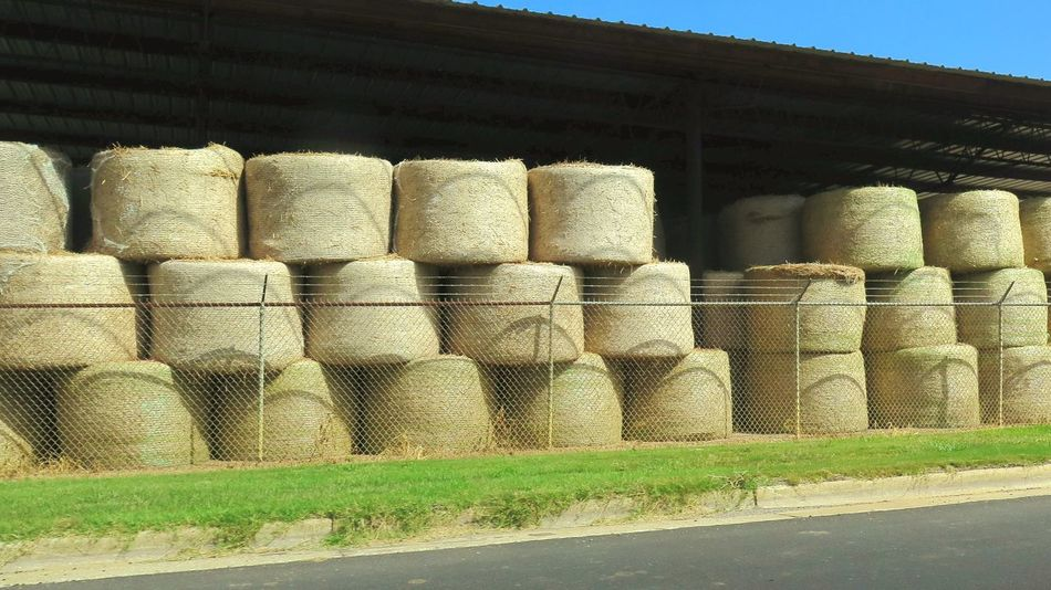 Stack Agriculture Warehouse Arrangement Day Industry No People Outdoors Grass Hay Bales Neat Neatly Stacked Neatly Arranged Stacked Up Farm Farms Farming Alabama Blue Sky Sky Sections Levels Divided Up