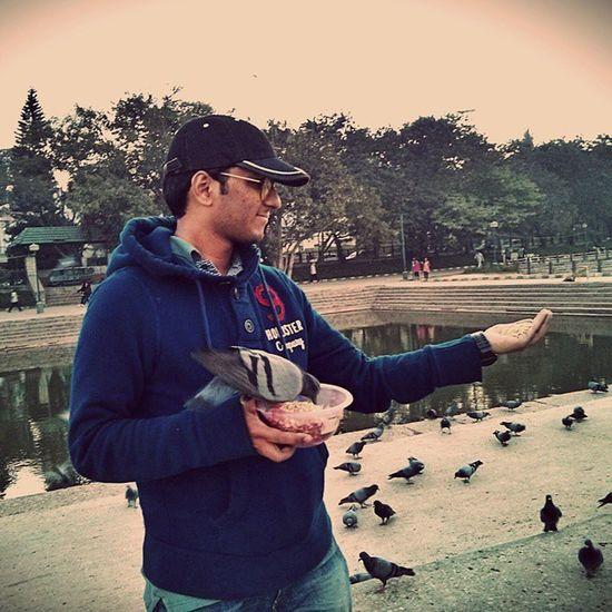 Feeding the lovely pigeons.. Sankey Bangalore