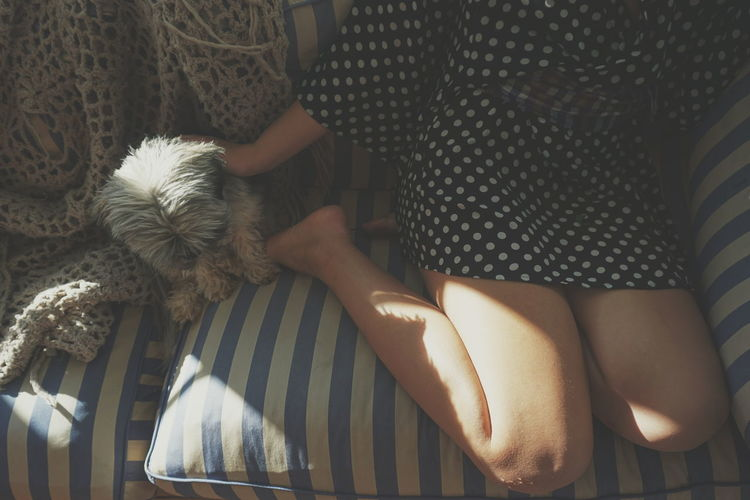 morning light Dog Dogs Dog Love Together Togetherness Friends Morning Light Human Hand Low Section Human Leg Midsection Close-up Leg Human Foot Foot Feet Personal Perspective Friend Skin Autumn Mood Capture Tomorrow