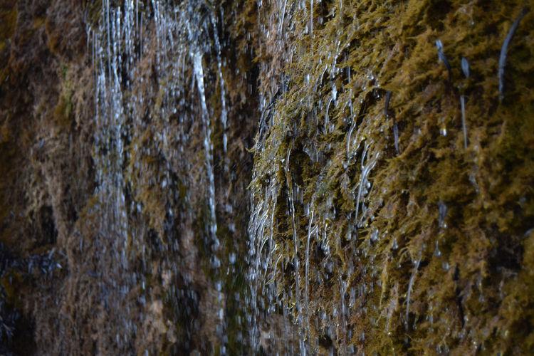 Water... Autumn Autumnwater Colors Drop Dropofwater Macro Water Waterfall Winter Yellowwaterfall