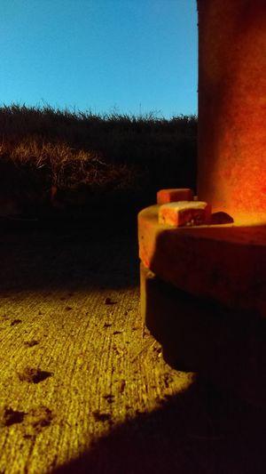 Grass Fire Hose Light And Shadow