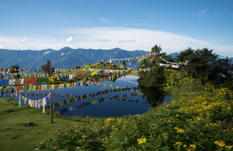 tranquil pond with buddhist prayer flags high in the himalayas Architecture People Water Nature Sky Landscape Tree Day Outdoors Grass Tranquility Mountain Scenics Beauty In Nature Idyllic Travel Destinations Mountain Range Large Group Of People Lush - Description Pond, Prayer Flags, Tawang, Himalayas, Wild Flowers, Reflection, High Altitu