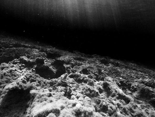 Gopro Goprohero4 Beahero Black Black And White Black & White Diving Beach