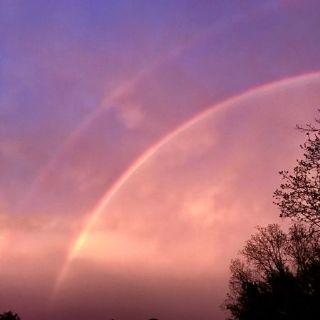 Double Rainbow Rainbow Beauty In Nature Nature Vapor Trail Scenics Low Angle View No People Sky Silhouette Tranquility Outdoors Day Tree