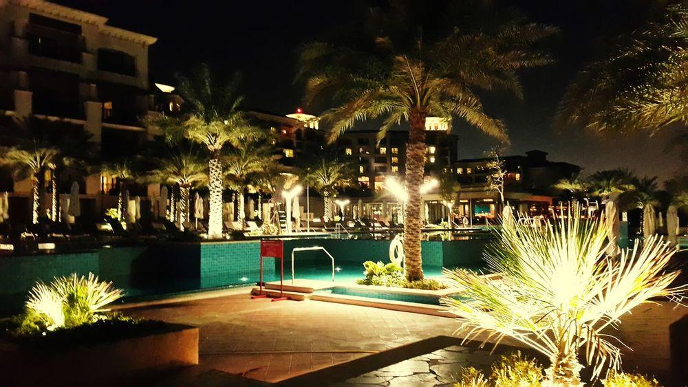 Amazing palms inside their villas Palmtrees Hotelview StRegisResort Saadiyat_island Amazingabudhabi Simplyabudhabi Nightphotography Exterior Abudhabilife Abudhabilovers