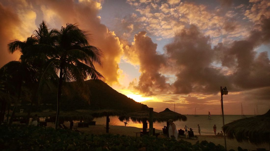 Sunset Nature Tree Beauty In Nature Sky Cloud - Sky Scenics Palm Tree Outdoors Water Sea Beach No People Day