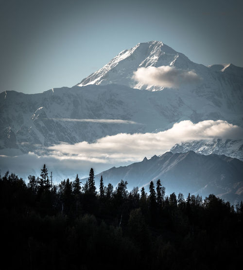 Alaska Alaskanadventures Beauty In Nature Cold Temperature Idyllic Landscape Majestic Mountain Mountain Peak Mountain Range Mt McKinley Nature Non-urban Scene Scenics Season  Sky Snow Snowcapped Mountain Tranquil Scene Tranquility Tree Weather Winter