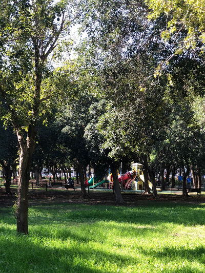 Group of people in park